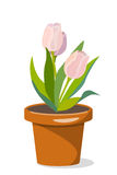 Trzy tulipanu w flowerpot royalty ilustracja