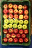 Trzy typ jabłka na rynku sprzedaży detalicznej obraz stock