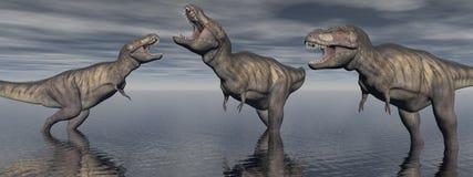 Trzy tyrannosaure dinosaur - 3d odpłacają się Obrazy Stock