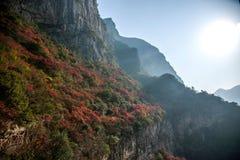 Trzy wąwozu jangcy doliny wąwóz Zdjęcie Royalty Free