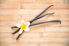 Trzy waniliowego strąka z kwiatem Zdjęcia Royalty Free