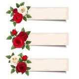 Trzy wektorowego sztandaru z czerwonymi i białymi różami Fotografia Royalty Free