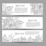 Trzy wektorowego sztandaru z pięknym monochromatycznym kwiecistym wzorem w doodle projektują Obrazy Royalty Free