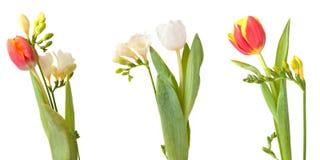 Trzy wiązki kwiaty Fotografia Royalty Free