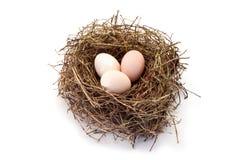 Trzy wiejskiego jajka w gniazdeczku Obrazy Stock