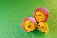 Trzy Wielkanocnego kurczątka Obrazy Royalty Free