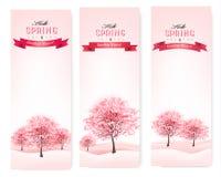 Trzy wiosna sztandaru z kwitnąć Sakura drzewa. Obrazy Royalty Free