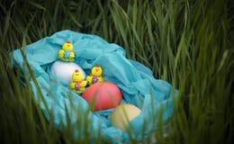 Trzy zabawkarskiego kurczaka i trzy Easter jajka na trawie w błękitnym koszu Obrazy Royalty Free