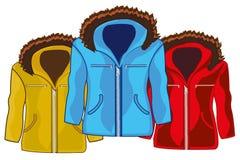 Trzy zimy męskiej kurtki zróżnicowany colour royalty ilustracja