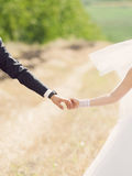 Trzymać ręki w polu Zdjęcie Stock