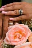 trzymaj ręce nowo małżeństwem Fotografia Stock