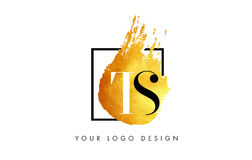 TS Gouden Brief Logo Painted Brush Texture Strokes Stock Foto's