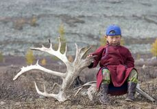 Tsaatan boy, dressed in a traditional deel with a reindeer horn Stock Images