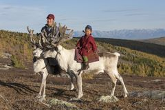 Tsaatan man and boy, dressed in a traditional deels, with his reindeers Stock Photo