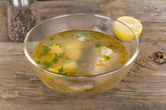 Tsar's fish soup Royalty Free Stock Photos
