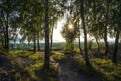 Tsarev kurgan Przyciąganie Samara region Na pogodnym letnim dniu Obraz Stock