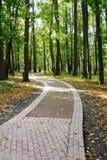 Tsaritsino公园合奏  免版税库存照片