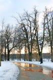 Tsaritsyno公园看法在莫斯科晚上 免版税图库摄影