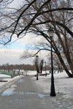 Tsaritsyno公园看法在莫斯科 树的胡同 库存图片