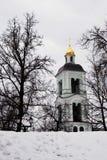 Tsaritsyno公园看法在莫斯科 通过树被看见的教会 免版税库存图片