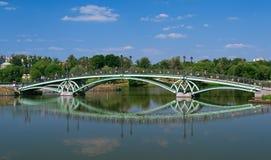 Tsaritsyno公园,在中间tsaritsinsky池塘的桥梁 图库摄影