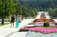 Tsaritsyno. Blooming flower bed. Heat Royalty Free Stock Photos