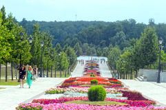 Tsaritsyno. Blooming flower bed. Summer Stock Photography