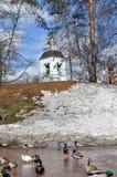 Tsaritsyno in de lente Stock Afbeelding