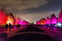 Tsaritsyno. International festival The Circle of Light. Tsaritsyno, Moscow, Russia - October 11, 2014: the international festival Circle of Light stock photo