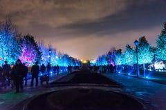 Tsaritsyno Międzynarodowy festiwal okrąg światło Zdjęcia Royalty Free