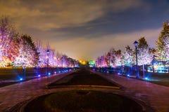 Tsaritsyno Międzynarodowy festiwal okrąg światło Obrazy Stock