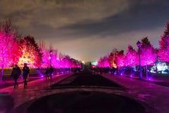 Tsaritsyno Międzynarodowy festiwal okrąg światło Zdjęcia Stock