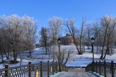 Tsaritsyno Moscow Royaltyfri Foto