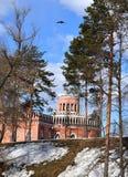 Tsaritsyno museum i Moskva Royaltyfri Fotografi