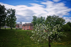 Tsaritsyno Palace Park. Moscow, Russia. 1775 Royalty Free Stock Photography