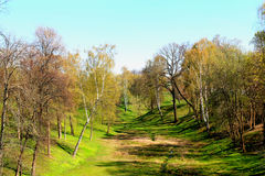 Tsaritsyno Park, Moscow. Tsaritsyno Park in Moscow, Russia Royalty Free Stock Images