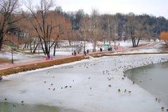 Tsaritsyno-Park in Moskau Lizenzfreies Stockfoto
