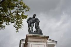 Tsarskoye Selo fotos de archivo