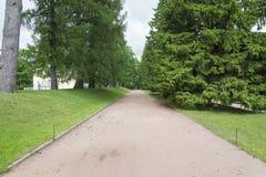 Tsarskoye Selo Pushkin, St Petersburg, allée en parc, arbres et arbustes, chemins de marche Photographie stock