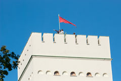 Tsarskoye Selo (Pushkin) St Petersburg Russland Der weiße Turm Lizenzfreies Stockfoto
