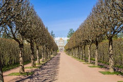 Tsarskoye selo Royalty Free Stock Images