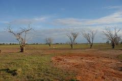 Tsavo East Stock Images