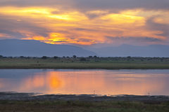Tsavo East Lake Sunset Stock Images