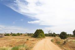 Tsavo East Landscape in Kenya Stock Images