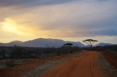 Tsavo parka narodowego Afryka wieczór Zdjęcie Stock