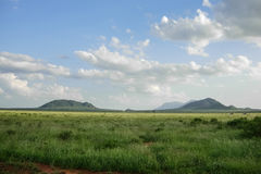 Tsavo Stock Photos