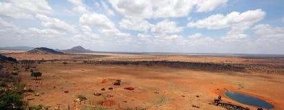 Tsavo wschodu park narodowy Zdjęcia Stock