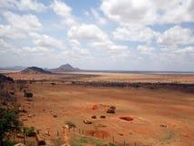 Tsavo wschodu park narodowy Fotografia Royalty Free