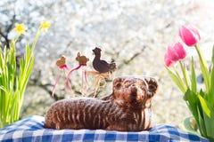 Tscheche Ostern - gebackenes Lamm mit Dekorationen, Blumen und blühender Kirsche im Hintergrund stockfoto