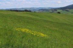 Tschechische Landschaft Stockfotografie